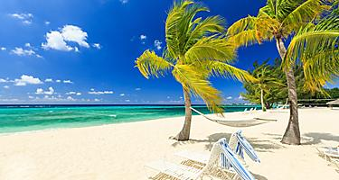 george-town-grand-cayman-seven-mile-beach-palm-trees